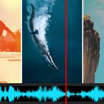 ブラウザーでお試し編集 Shutterstock 「Sequence」